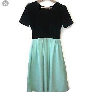 LuLaRoe Dresses - Lularoe Amelia Dress NWT